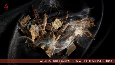 What is Oud Fragrance & Why is it so Precious?